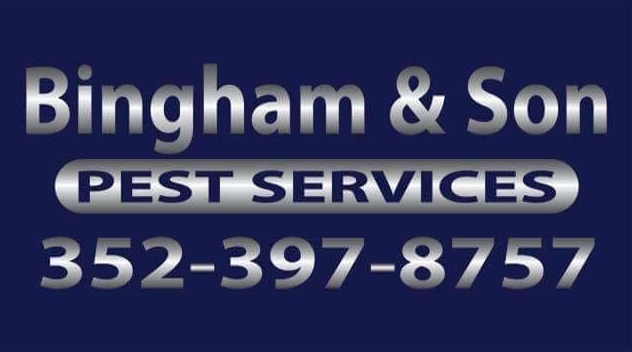 Bingham and Son Pest Services